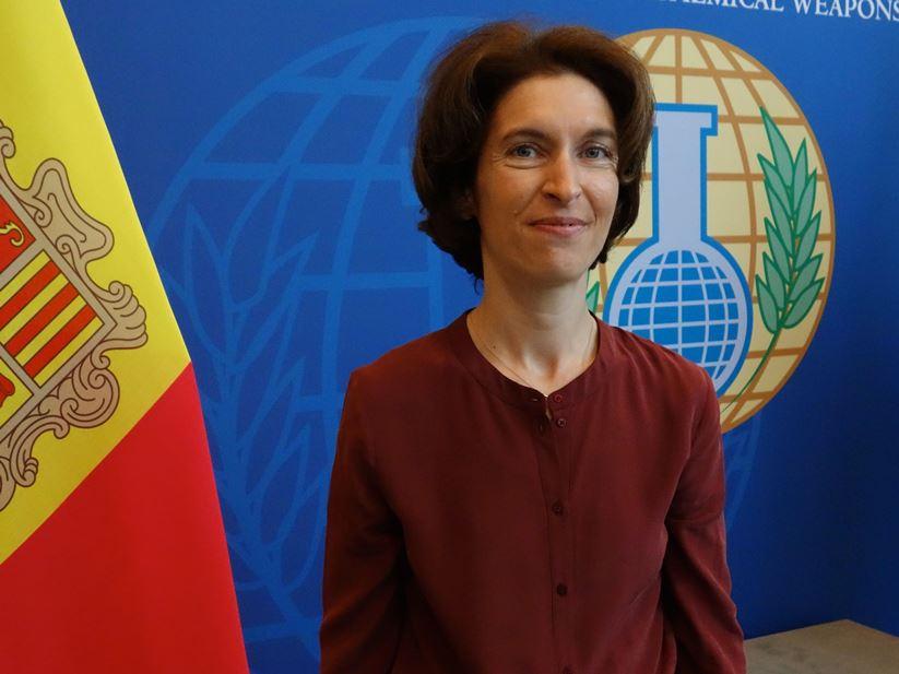 Ubach nega que l'acord d'associació faci créixer la immigració il·legal