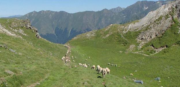La CUP denuncia els interessos miners al Parc Natural de l'Alt Pirineu