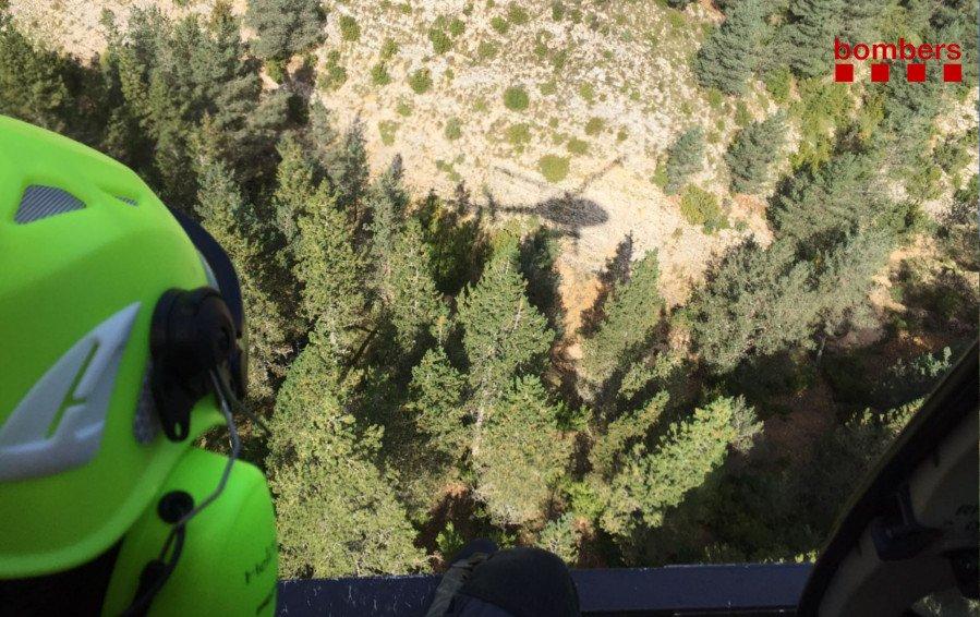Trobat viu el boletaire perdut al Pirineu