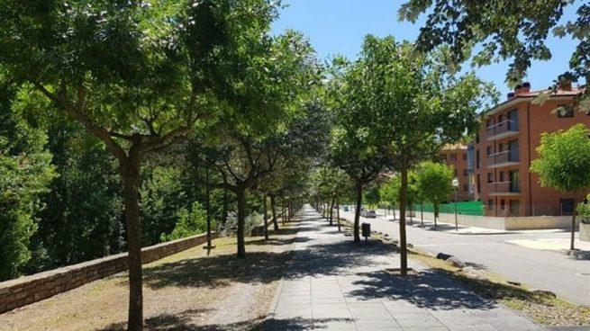 La Pobla aprova fer una consulta sobre el nom del Passeig Josep Borrell