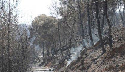 El foc de la Ribera d'Ebre, perimetrat i en vies d'estabilització