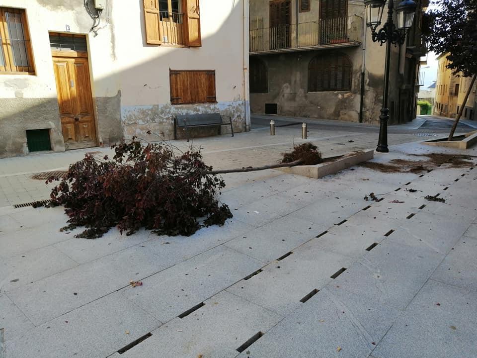 Destrosses a la plaça Vedruna de Puigcerdà