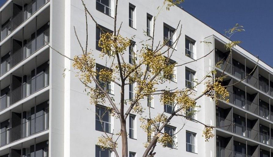El govern de Torra ha incomplert el pla de xoc a favor d'un parc públic d'habitatge